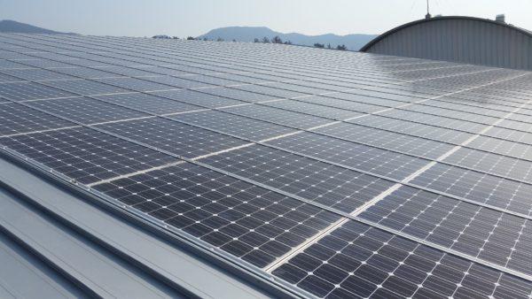Rückschläge in der Solarenergie müssen hingenommen werden.