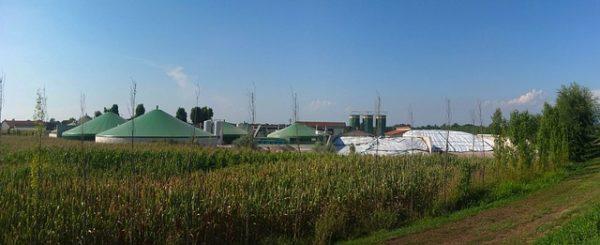 Mit dem Umstieg auf Biogas bzw. Ökogas tut man der Umwelt etwas gutes
