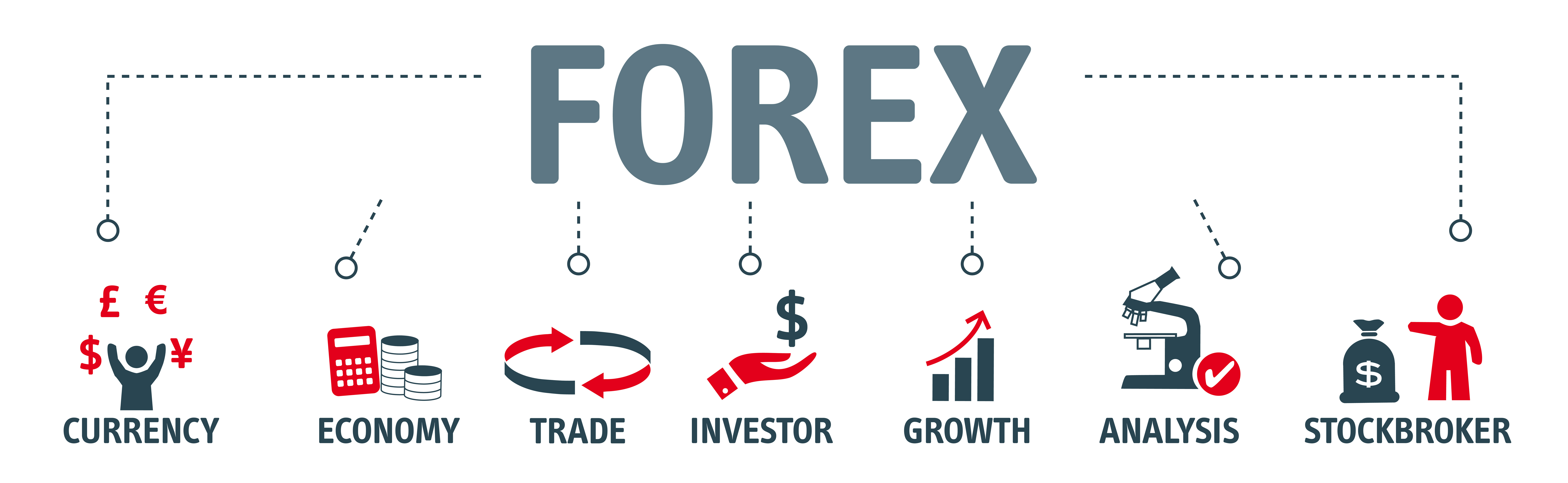 Forex Trading lernen Test
